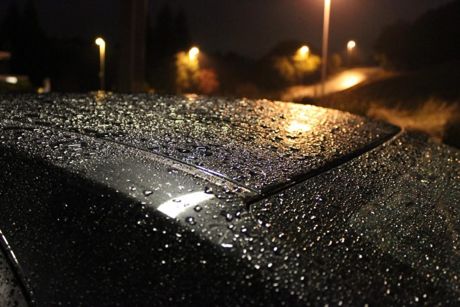 Slipping+in+the+Rain%3A+Please+Walk+Carefully%21