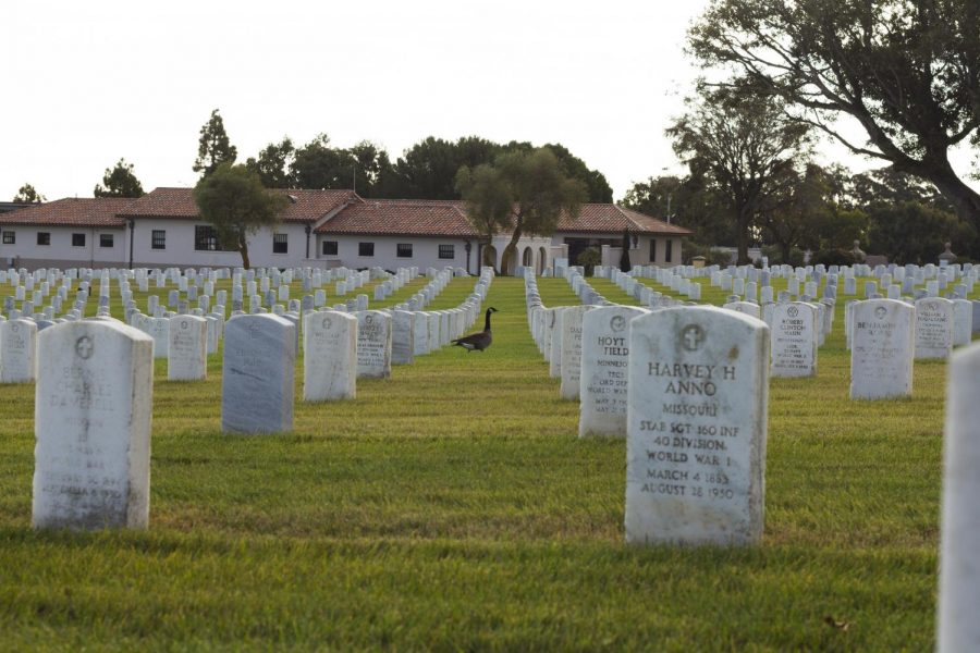 Photograph of the US National Cemetery in San Francisco