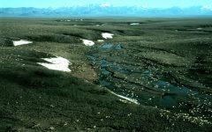 Petroleum & Permafrost: Impacts of The Senate Tax Plan