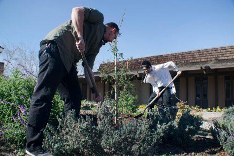 Jewish Heritage Month Closing Ceremony: Tu Bishvat Tree Planting
